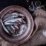 バスク・カンタブリア海のアンチョアの6つの秘密